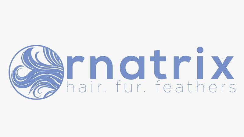 A Logotype for Ornatrix 3ds Max Plugin