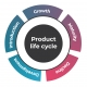 Product Life Cycle: 5 Stages