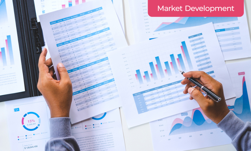 A Marketer Calculating Risks of Market Development Strategy for Products