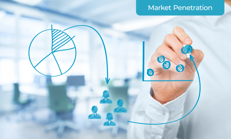 A Marketer Planning Market Penetration Strategy for Existing Products